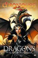 Dragons d'une aube de printemps - seconde partie